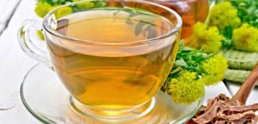 8 plantes et aliments pour lutter contre la fatigue